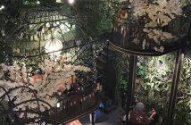 Top 15 quán cafe lãng mạn ở Sài Gòn cho buổi hẹn hò 1
