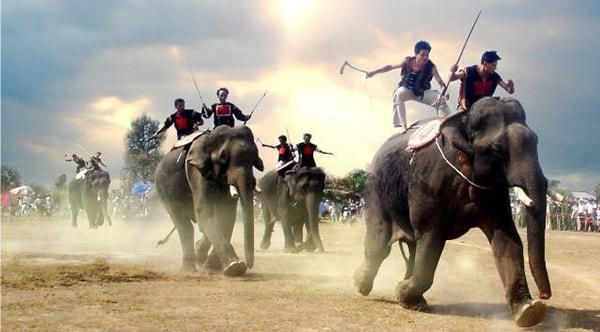 Tháng 3 đi du lịch Tây Nguyên dự hội đua voi