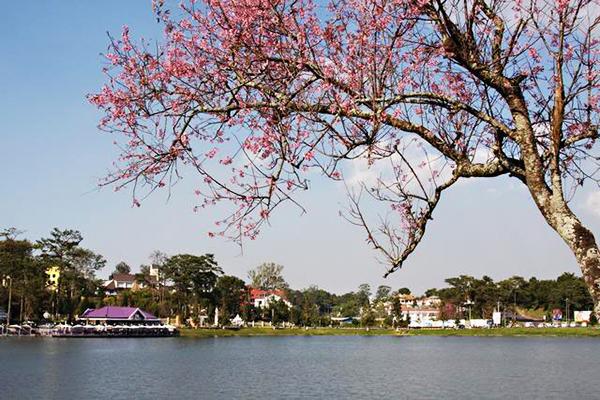 3 địa điểm du lịch gần Sài Gòn nên đi vào dịp 30/4 6