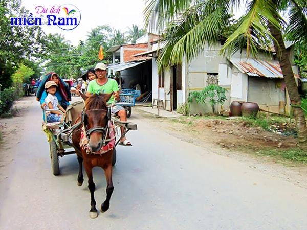 Du khách đi xe ngựa tham quan cù lao Thới Sơn – Tiền Giang