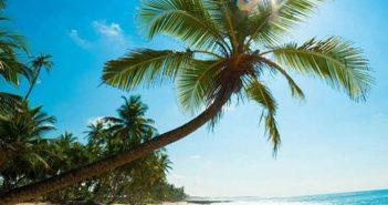 10 bãi biển đẹp nhất miền Nam