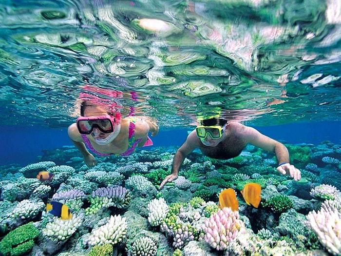 Lặn ngắm san hô Phú Quốc – trải nghiệm khó quên
