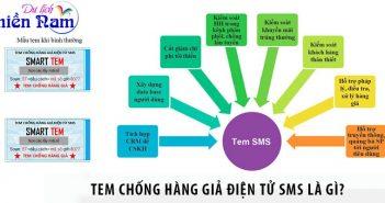 Tem chống hàng giả điện tử SMS là gì?
