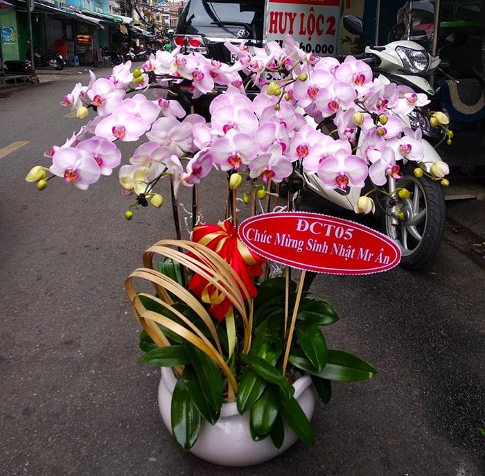 Shop điện hoa Nét Việt ở Bình Dương